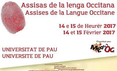 Assises de la langue occitane